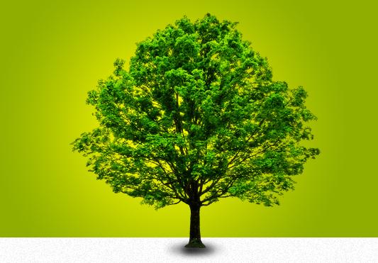 Vizavie les cloisons de jardin qui allient l 39 esth tique du bois la r sistance du composite - Cloison de jardin ...